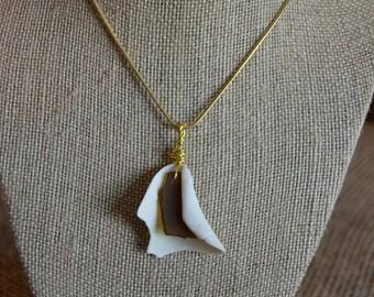Genuine Sea Glass in Shell