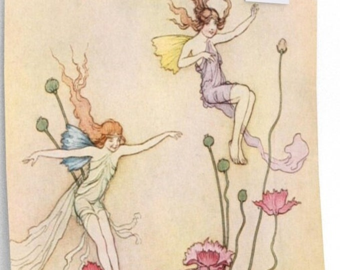 Warwick Goble Fairies and Flowers In Pink and Green Home Decor Wall Art