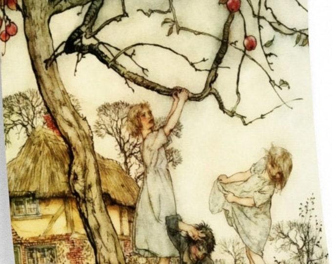 PICKING APPLES VINTAGE - Poster, Arthur Rackham Midsummer Night's Dream, Fairy Tale Art, Book Plate