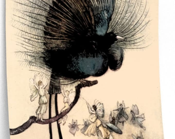FAIRY & BIRD Poster - Warwick Goble Watercolor Wall Art, Fantasy Art Print, Vintage Book Art
