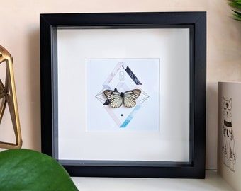 Framed Butterfly - Redspot Sawtooth on collage