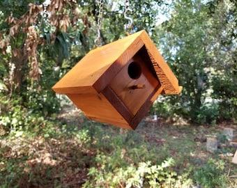 Hanging Bluebird House
