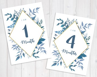 Blue Floral Baby Milestone Cards Photo Prop| Months 1-12 | 1 Week | 1 Year | Set of 14 Printable PDF 5x7 | With and Without Crop Marks