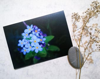 """Floral Photography Greeting Card """"Forget-me-not"""""""
