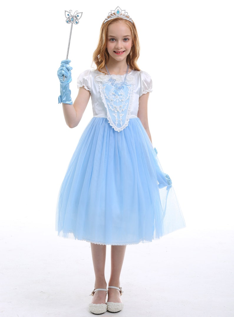 Girl Cinderella Costumes Ball Gown Birthday Dress Halloween Cosplay Princess Dress
