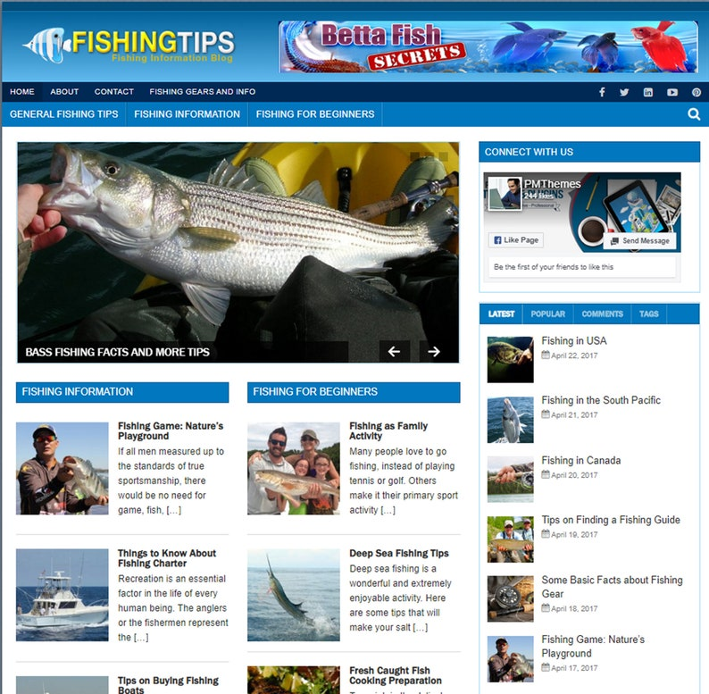 Fishing Tips Mobile Responsive WordPress Blog image 0