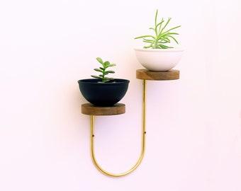 Modern wall mounted brass and wood shelves
