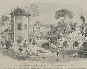 Antwerp Zoological Garden's Galleries of Collections 1853. Lodges for Live Animals, Constructed at the Zoo. Large Antique Engraving.