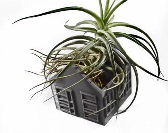 Planters / Vases