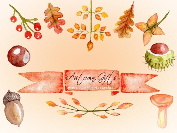 Aquarell Herbst Cliparts Eichel Kastanien Clipart Thanksgiving Etsy