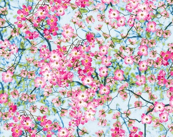 """10 Metres Pink /& Cream /""""Blossoms/"""" Floral Printed Summer Dress fabric."""