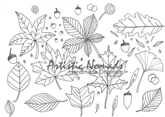 - Autumn Leaves Coloring Pages Adult Coloring Pages Etsy