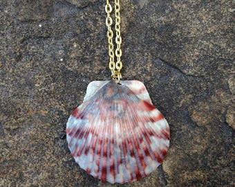 Scallop Necklace, Handmade Shell Necklace, Shell Jewelry