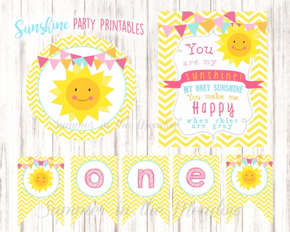 You Are My Sunshine Party Decorations Sunshine First Birthday Party Decor Sunshine Party Banner Photo Props Party Props Set