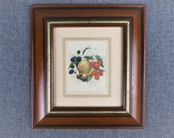 Vintage Farmhouse Kitchen Botanical Art Print - Autumn Fruits