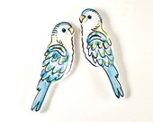 Budgie Wall art decorations