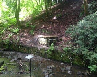 Wallace's Well - Pittencrieff Glen