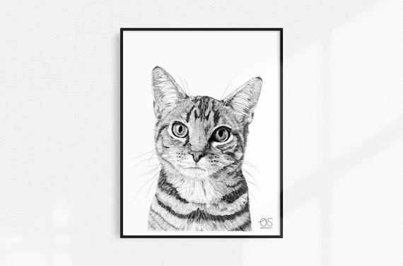 gift for cat lover abstract pet portrait wall decor black and white photography Tabby cat cat print,