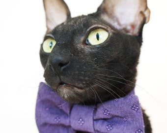 Kotomoda CAT WEAR Bow tie Violet