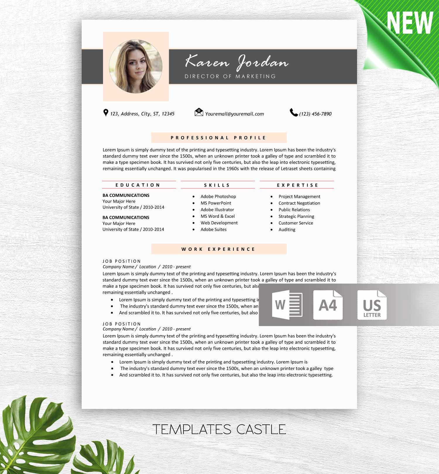 Professional Resume Word Template: Professional Resume Template Word With Photo Modern Resume
