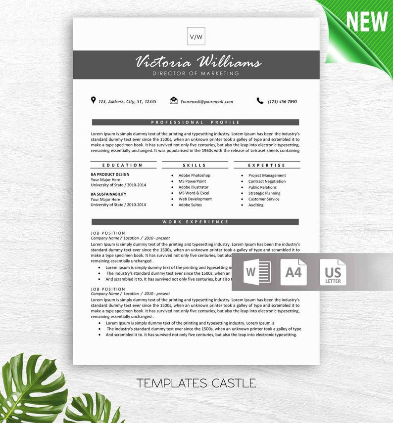 Resume Template Modern Professional For Word