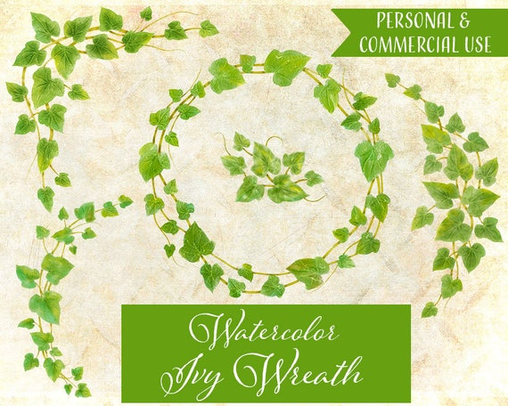 watercolor ivy wreath ivy wreath clipart ivy clipart leaf etsy