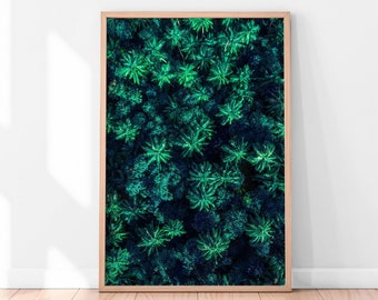 Tropical Printable Art, Botanical Print, Tropical Art Print, Green Forest Wall Art, Green Plants Tropical  Printable Digital Download Green