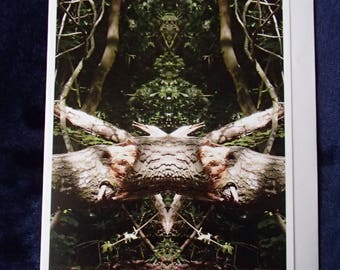 Meditation/Contemplation/Greetings Card