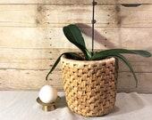 Rattan Wicker Weave Basket, plants, waste paper