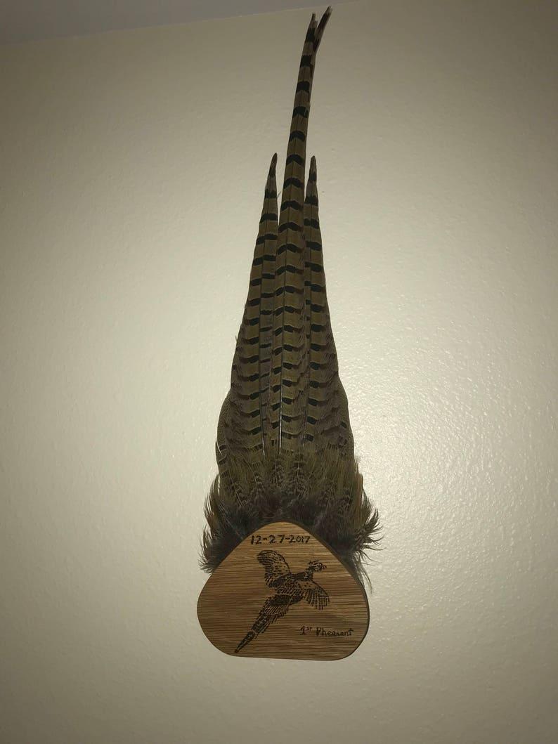 Customized Pheasant Tail-Fan Mount Display