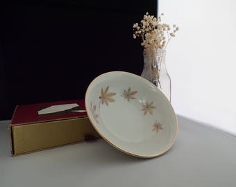 Vintage Autumn Leaf China Bowl