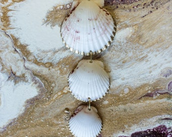 Gold Lined Calico Scallop Necklace