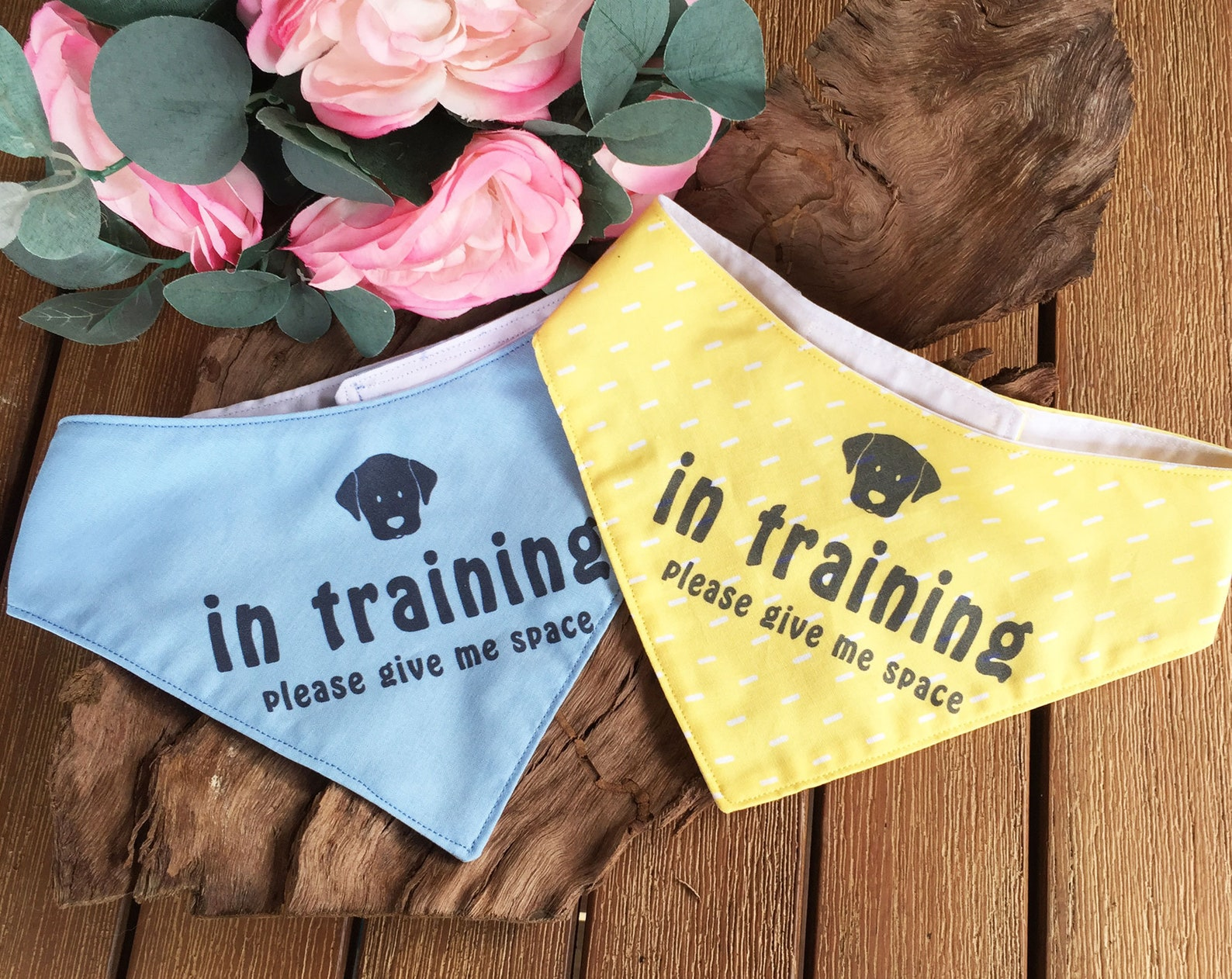 In training dog bandana