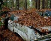 Chrysler in the leaves...