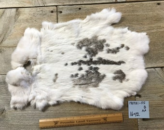 Spotted Grey and White Rabbit Hide One Average Natural Rabbit Fur No 180607-LL