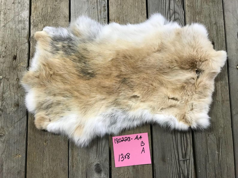 One Average Japanese Harlequin Brown Rabbit Hide Natural Rabbit Fur No 180223 Aa