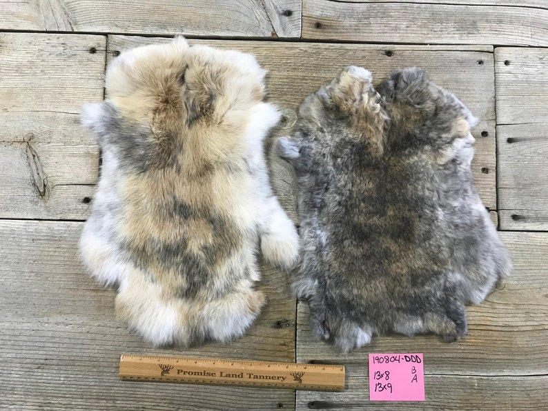 Lot Of 2 Assorted Japanese Harlequin Rabbit Hides As Shown Natural Rabbit Fur No 190804 Ddd