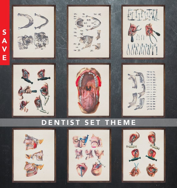 Anatomy Art Set Dentist Dental Medical Student Gift For Doctor Etsy
