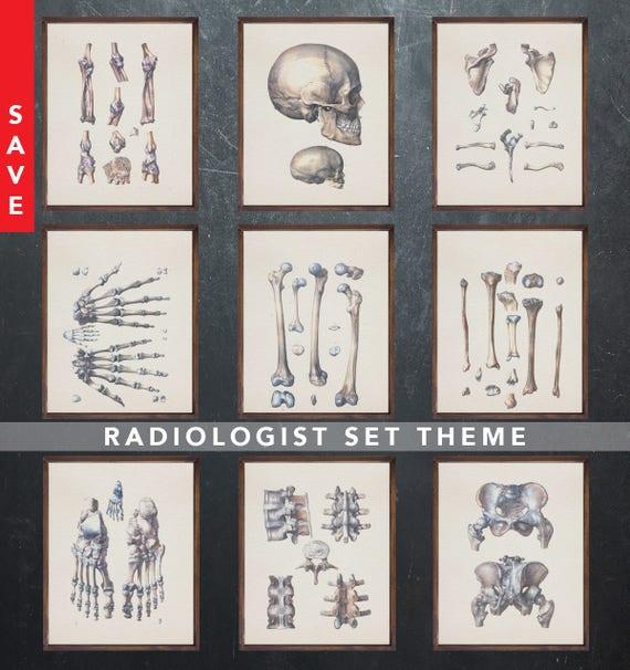 Anatomy art set RADIOLOGIST Radiology medical student gift for | Etsy