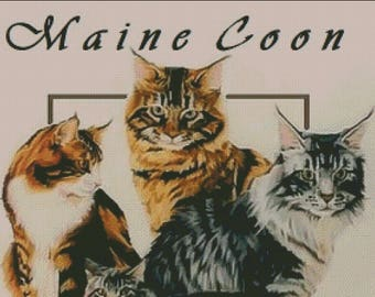 Maine Coon kitty cat counted cross stitch patterns
