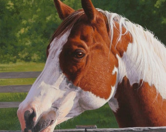 Quarter horse paint counted cross stitch pattern