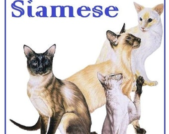 Siamese cat breed cats kitty counted cross stitch pattern