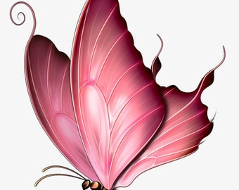 Pink Swallowtail Butterfly  counted cross stitch pattern