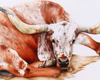 Texas Longhorn Bull cow cattle counted cross stitch pattern
