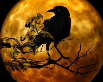 Raven and full moon Halloween  counted cross stitch pattern