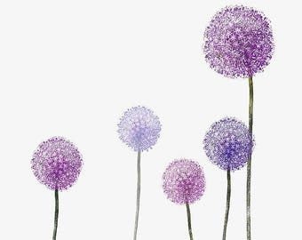 Purple Allium flowers wild garlic  onion blooms counted cross stitch pattern