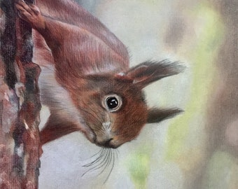 Red Squirrel wildlife animal counted cross stitch pattern