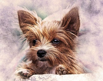 Yorkshire Terrier dog yorkie puppy counted cross stitch pattern PDF download