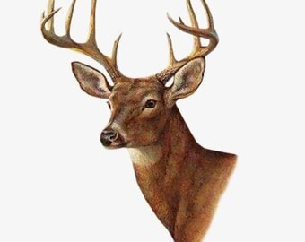 Whitetail Buck Deer wildlife nature counted cross stitch pattern