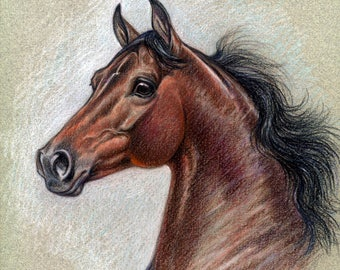 A Morgan horse  bay brown counted cross stitch pattern PDF